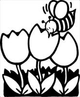 bee-on-tulips