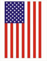 large-vertical-US-flag