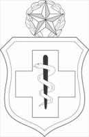 Enlisted-Medical-badge