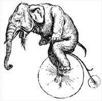 elephant-on-a-bike