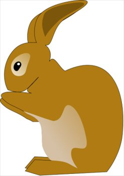 rabbit-little-brown
