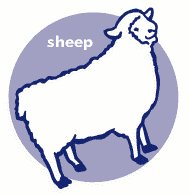 sheep-icon